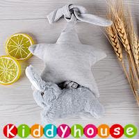bb嬰兒玩具~毛毛兔音樂車床掛/吊飾 T339 現貨