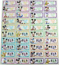 Mickey & Minnie name stickers 米奇米妮綜合(特寫版)姓名貼紙 -2209