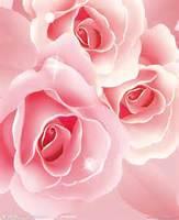 ( 香水小鎮 ) 私家調制 の 红玫瑰香水